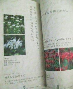 画像3: 中井貴一 黒木メイサ・出演「風のガーデン 貞三先生の花言葉 365篇」倉本聰・著