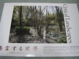 発言する風景クリティカルランドスケープ展ポスター/1993年東京都写真美術館