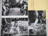 寺山修司・監督「さらば箱舟」ATG映画スチール写真3枚一括