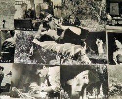 画像1: 山崎努 新珠三千代・主演「悪の紋章」 映画スチール写真 13枚