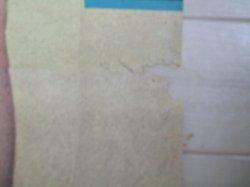 画像4: 若松孝二・監督「女子高校生(秘)課外サークル」東映 立看ポスター/検;ピンク映画 水城マコ