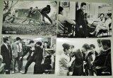 根岸一正・出演「非行少年」日活 映画 スチール写真 4枚一括 /監督・河辺和夫